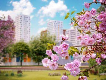 квартиры в ЖК Румянцево Парк